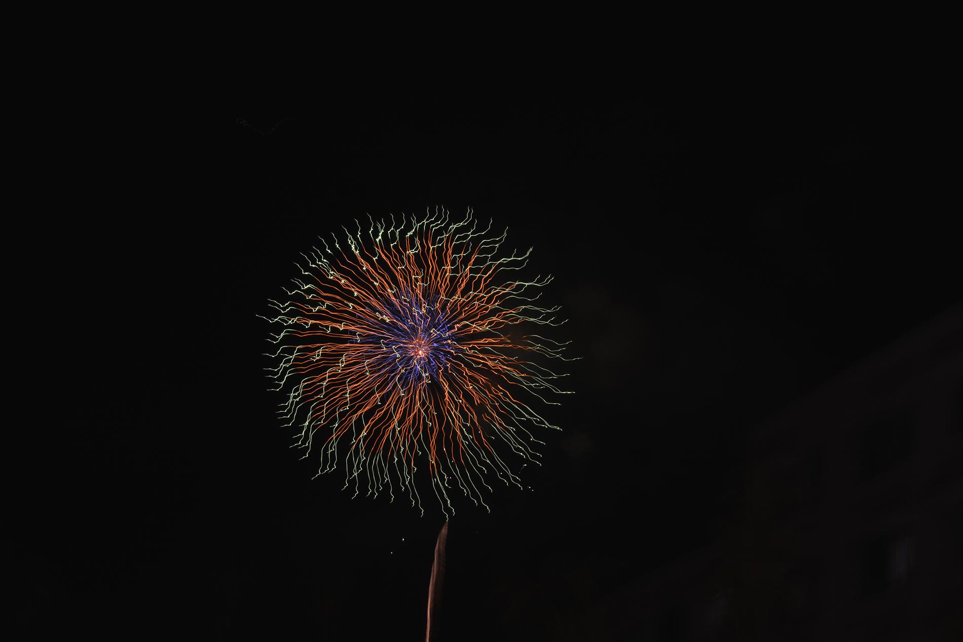 Les fleurs de feu du hanabi